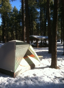 My Three-Season Tent From REI