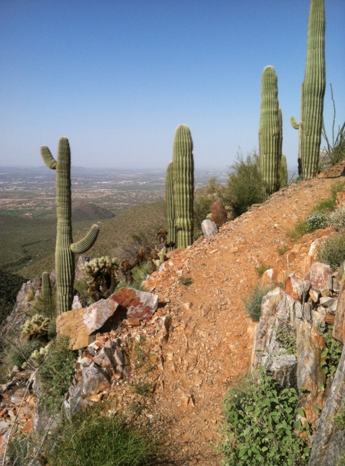 hiking, Arizona, Steve Parker MD
