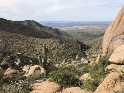 At the base of Tom's Thumb, overlooking Scottsdale and the Valley of the Sun